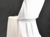 Chair Cover and Chair November Special only <b> $2.99</b>